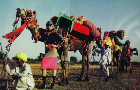 India_camel_27
